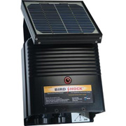 Bird Shock Charger - 12V Solar