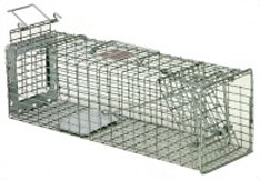 Safeguard 52818 Squirrel Cage Trap 18