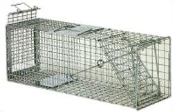 Safeguard 52824 Skunk Cage Trap 24