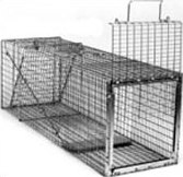 Safeguard 54124 Professional Skunk Cage Trap 24