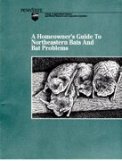 A Homeowner's Guide to Northeastern Bats and Bat Problems