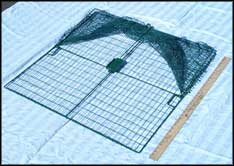 WCS™  E-Z Catch Bird Trap for Chicken & Duck (36