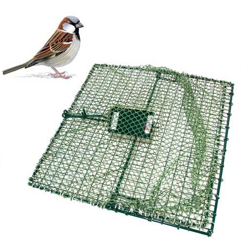Wcs E Z Catch Bird Trap 17 X 17 Wildlife Control