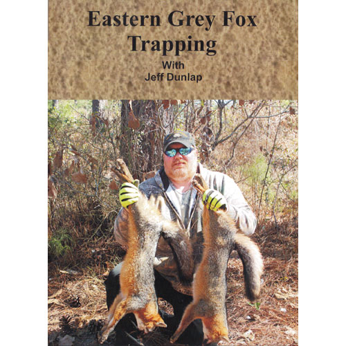Jeff Dunlap S Quot Eastern Grey Fox Trapping Quot Dvd Wildlife