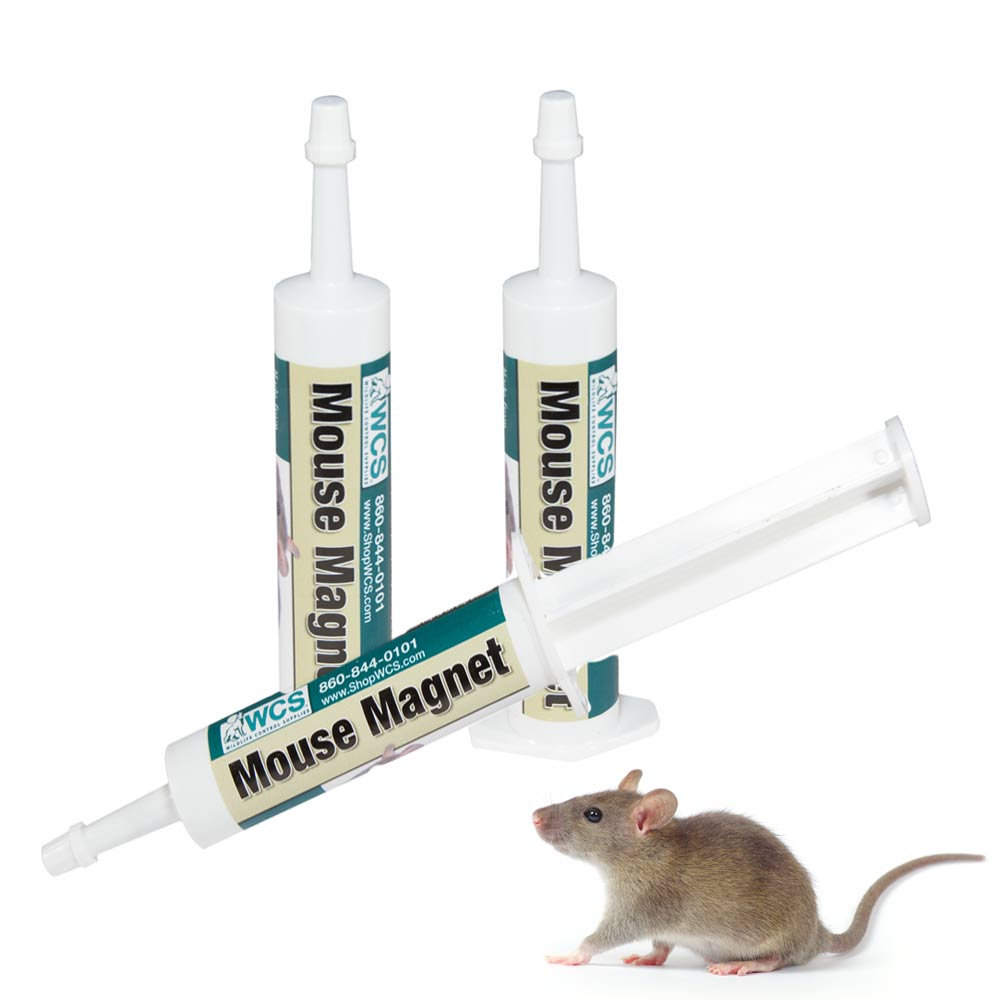 Mouse Proof Dog Door : Mouse magnet bait tubes wildlife control supplies