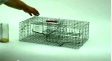 Multi-Catch Rodent Trap Video