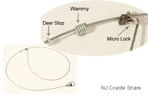 New Jersey Coyote Snare Wildlife Control Supplies