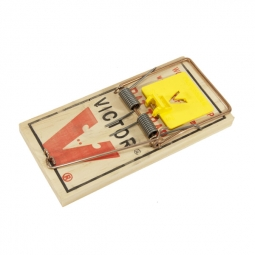 how to set up a tomcat mouse trap