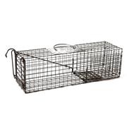 Wickenkamp Skunk/Cat Trap (Model 24)