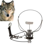 COLLARUM® Live Capture canine device (WOLF Model)