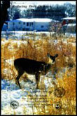 Reducing Deer Damage to Home Gardens and Landscape Plantings
