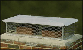 BigTop�  Multi-Flue Stainless Steel Chimney Cap - 14