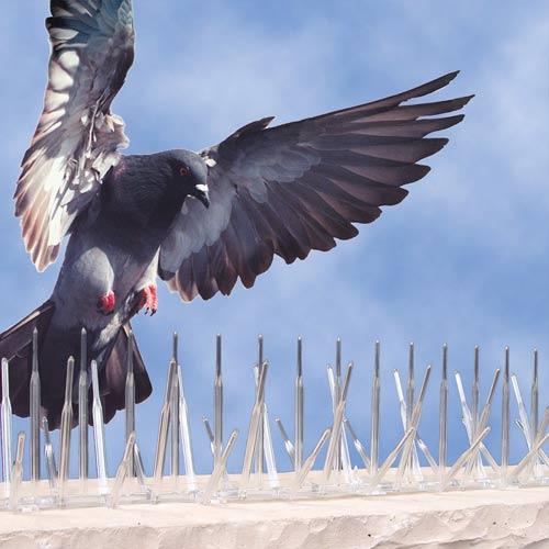 Bird B Gone Polycarbonate Spike Wildlife Control