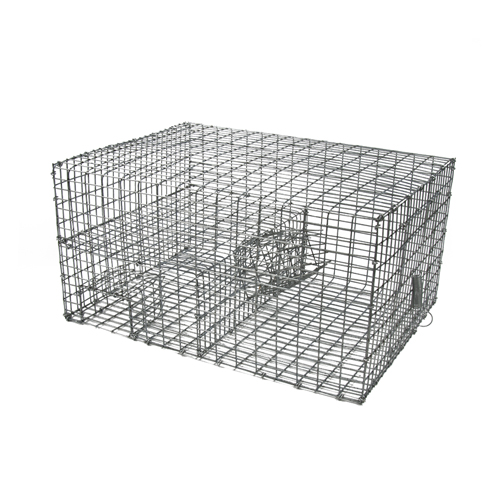 Wcs Multi Catch Sparrow Trap Wildlife Control Supplies